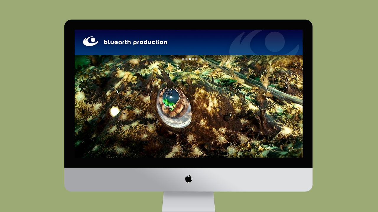 bluearth-production-creation-site-web-caconcept-alexis-cretin-graphiste-montpellier-3
