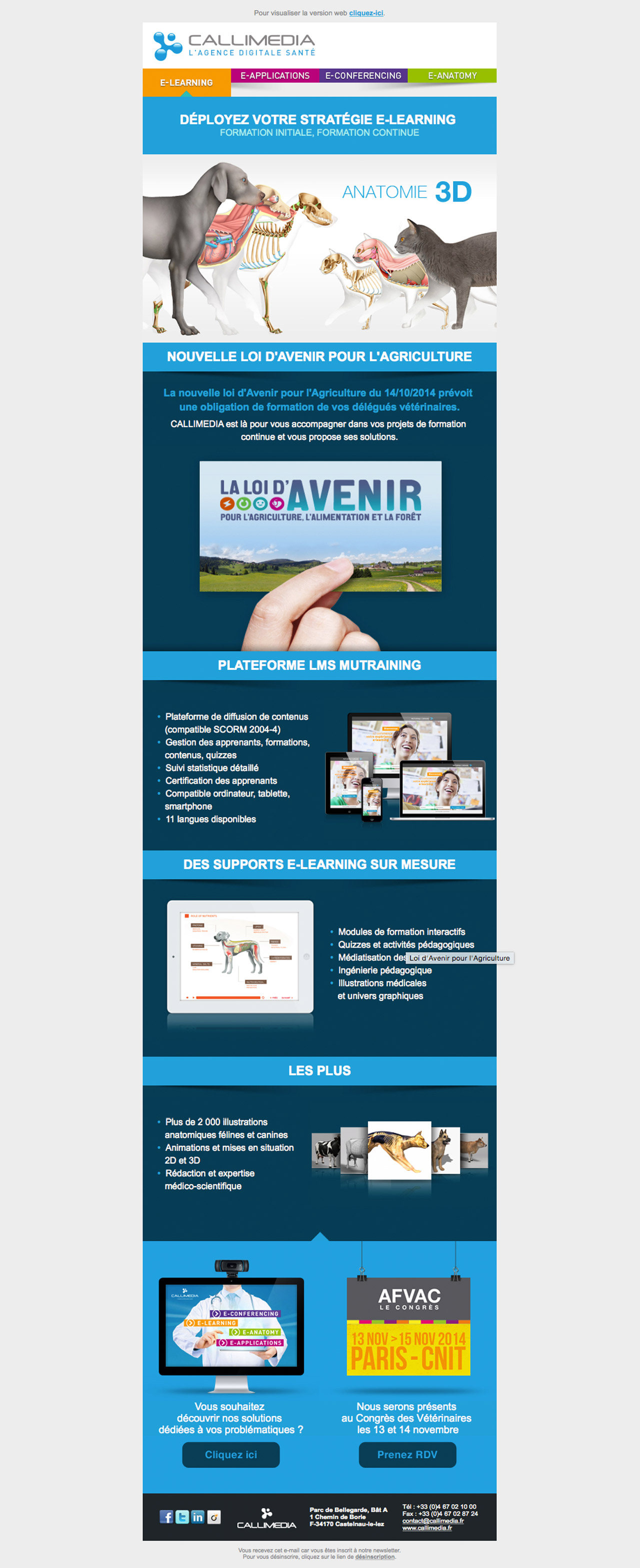 callimedia-newsletter-creation-caconcept-alexis-cretin-graphiste-3