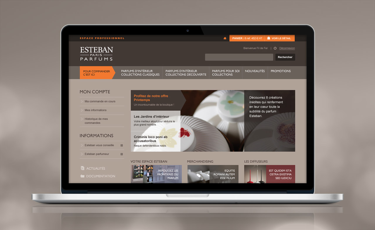 esteban-professionnel-site-internet-accueil-creation-communication-caconcept-alexis-cretin-graphiste