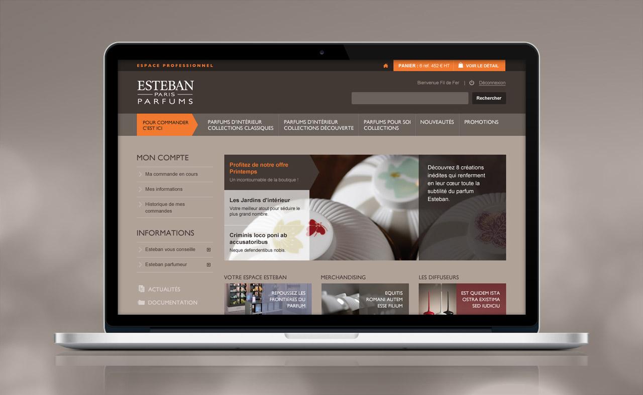 esteban-professionnel-site-internet-accueil-creation-communication-caconcept-alexis-cretin-graphiste