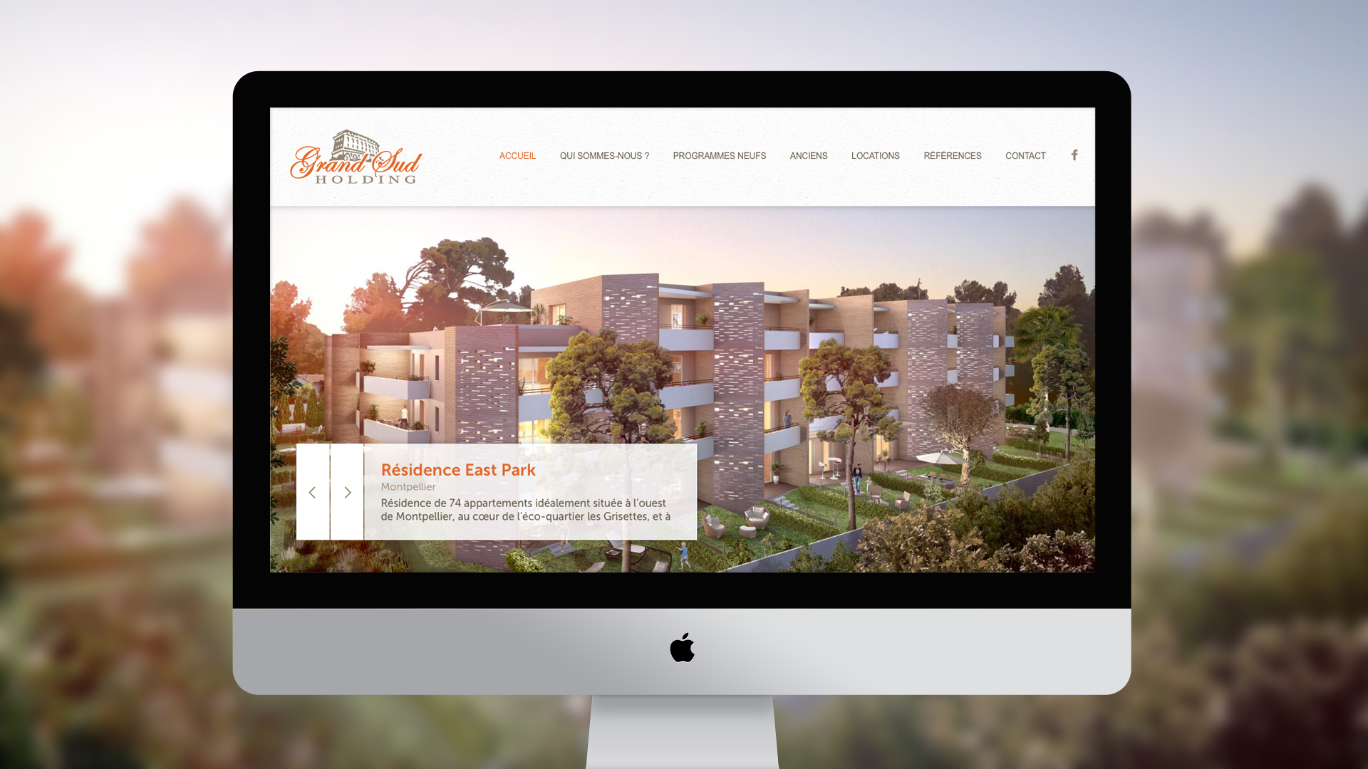 grand-sud-holding-creation-site-internet-hemerastudio-alexis-cretin-graphiste-montpellier