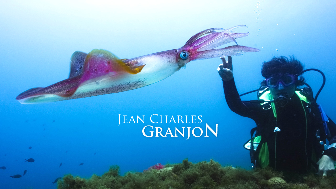granjon-realisation-creation-site-web-caconcept-alexis-cretin-graphiste