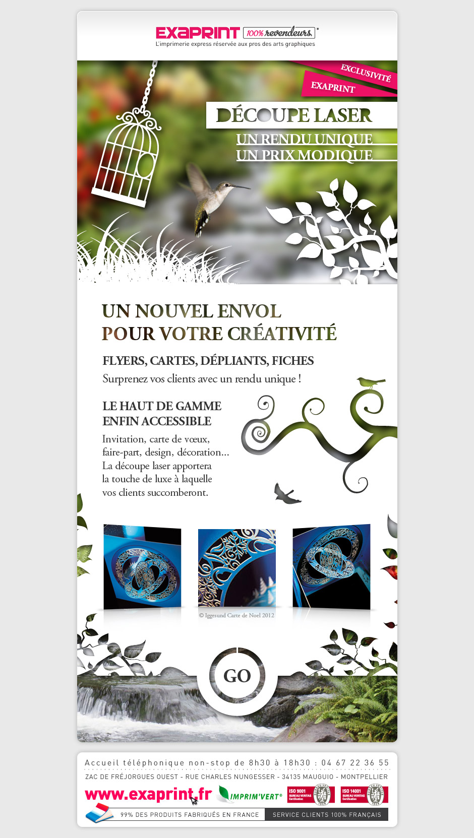 Graphiste Montpellier Creation Exaprint Decoupe Laser Agence Communication