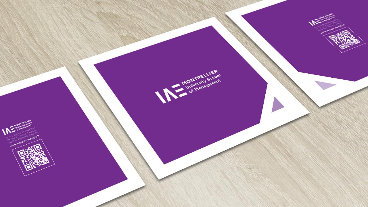 iae-montpellier-creation-brochure-communication-caconcept-alexis-cretin-graphiste-1