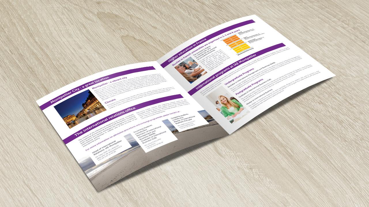 iae-montpellier-creation-brochure-communication-caconcept-alexis-cretin-graphiste-3
