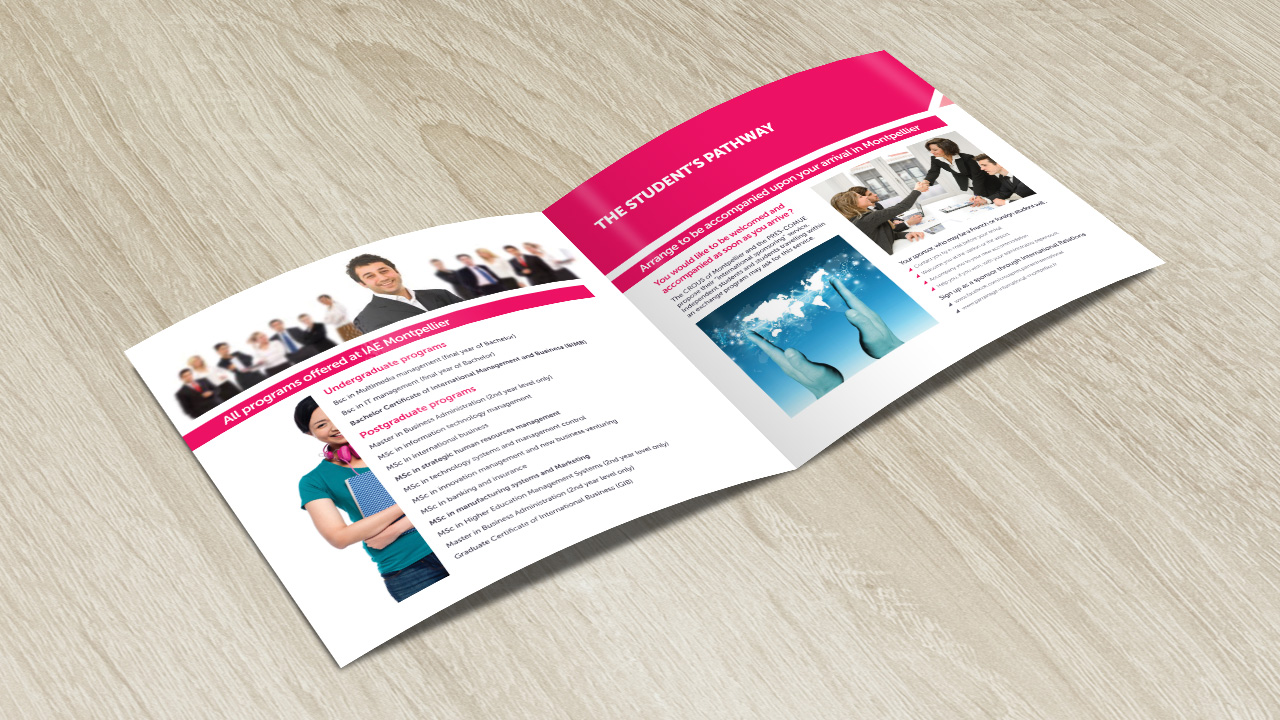 iae-montpellier-creation-brochure-communication-caconcept-alexis-cretin-graphiste-4
