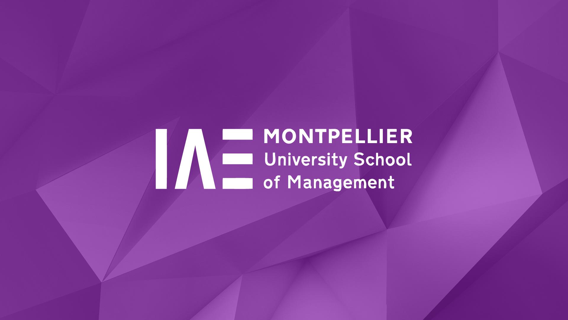 iae-montpellier-creation-plaquette-brochure-fiches-diplomes-communication-caconcept-alexis-cretin-graphiste