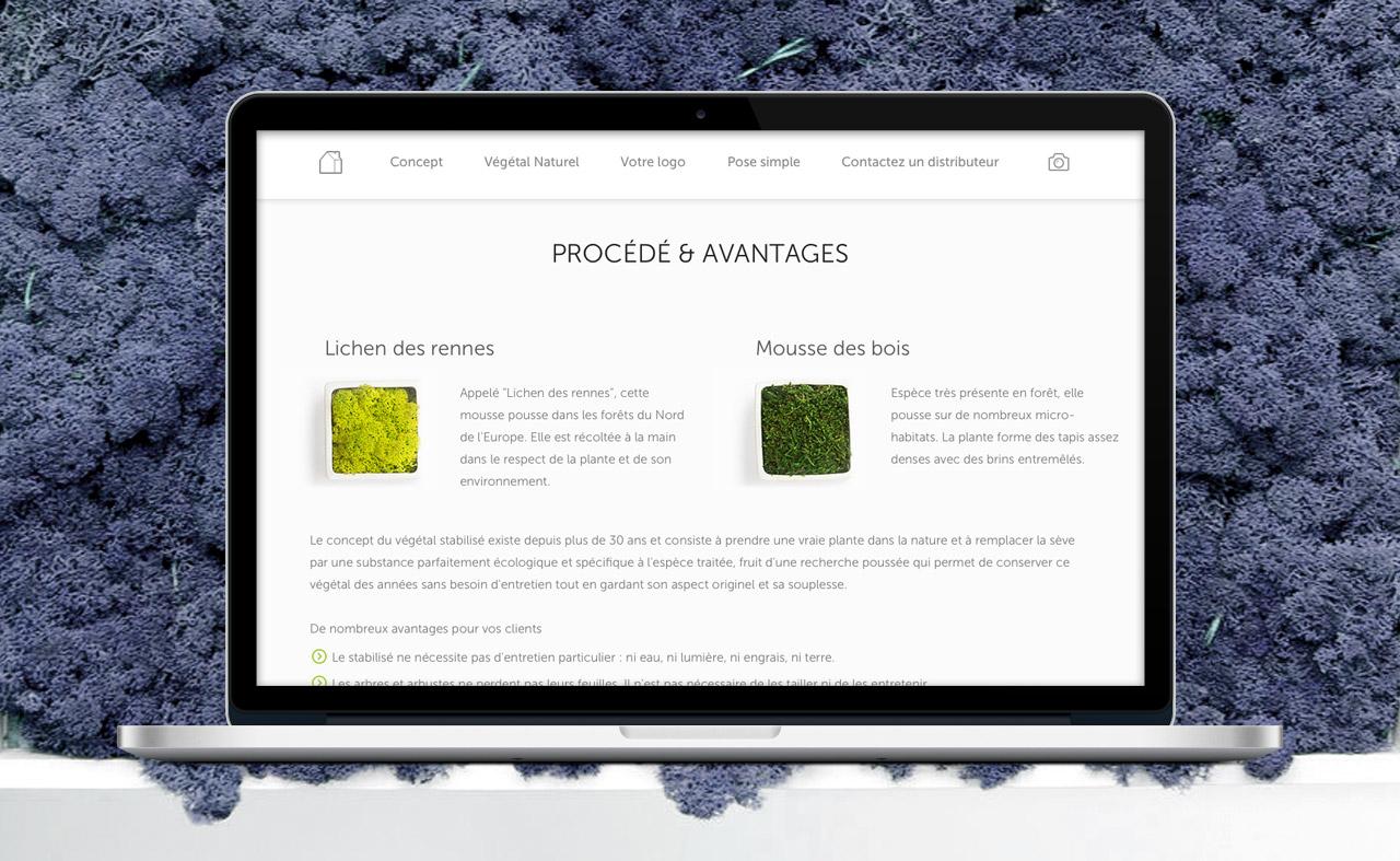 logo-vegetal-site-internet-creation-communication-caconcept-alexis-cretin-graphiste-3