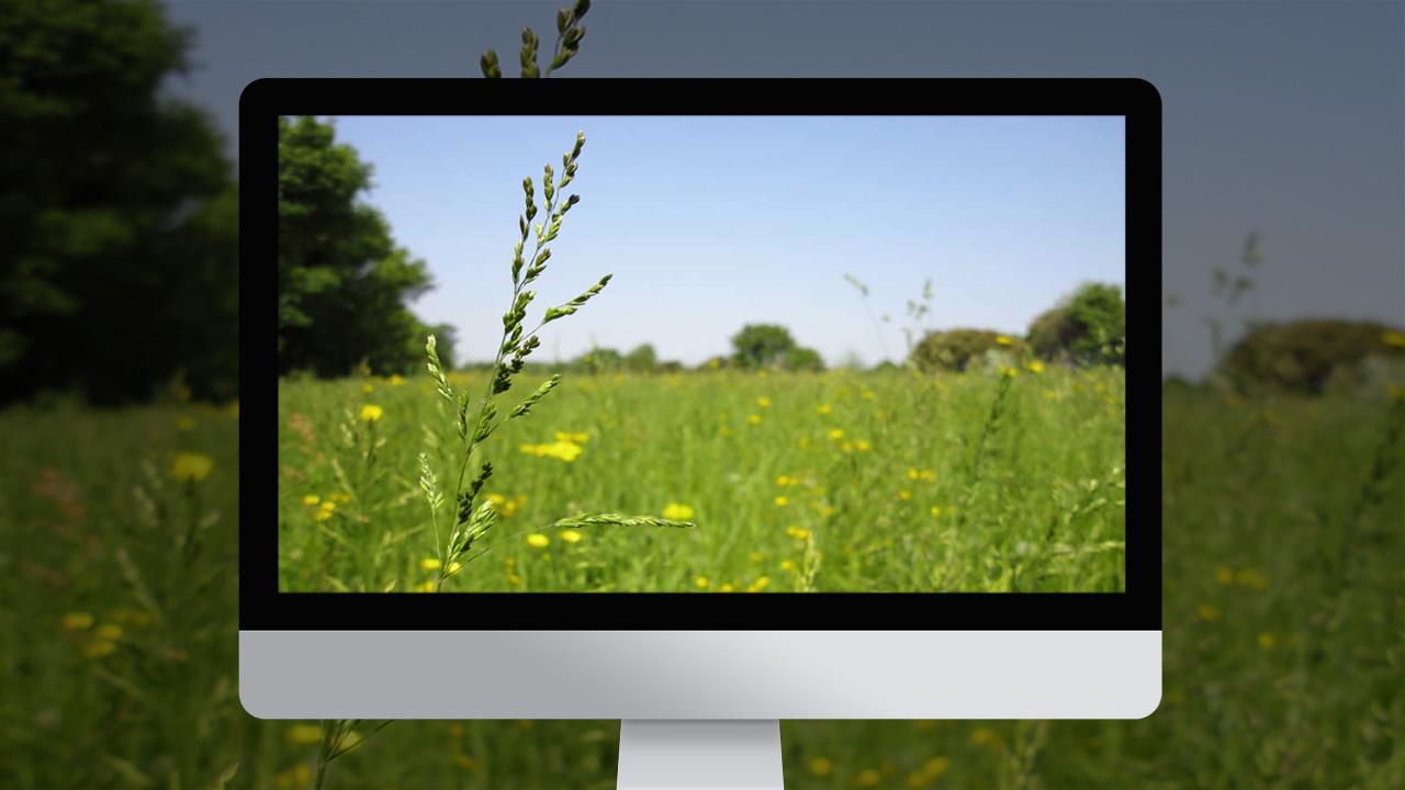 mas-regardevenir-creation-site-internet-caconcept-alexis-cretin-graphiste-montpellier-4
