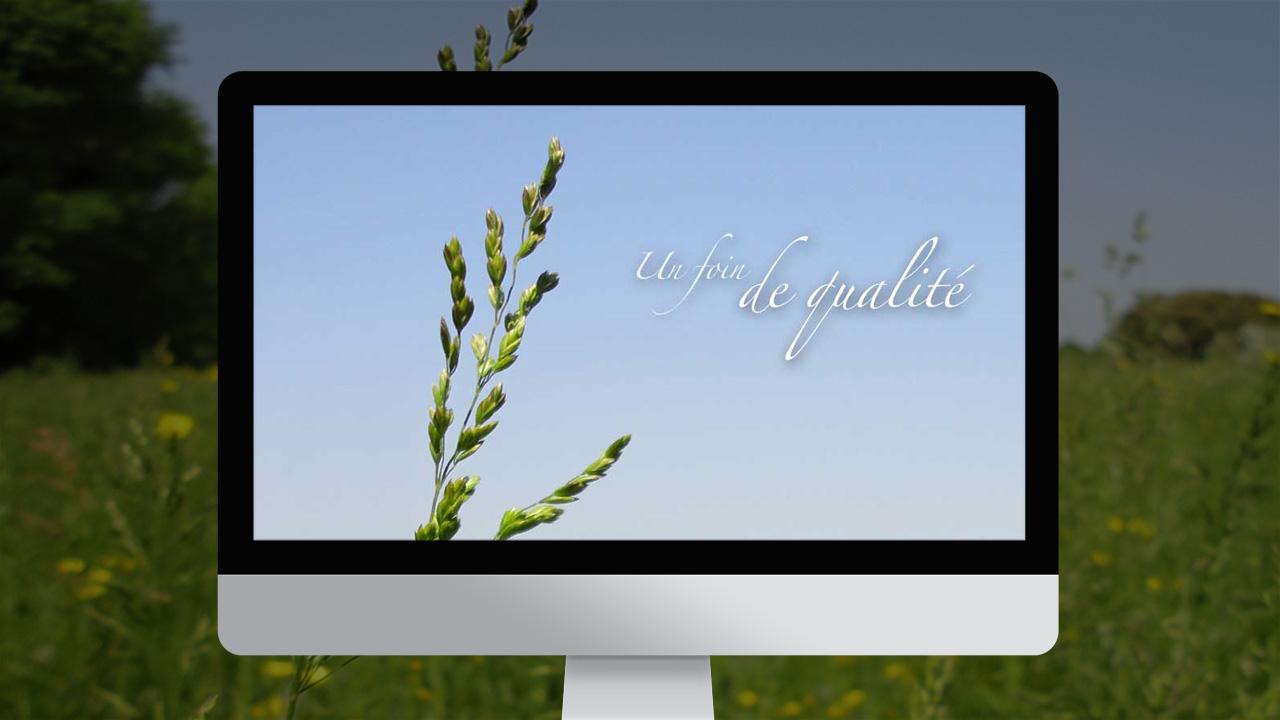 mas-regardevenir-creation-site-internet-caconcept-alexis-cretin-graphiste-montpellier-5