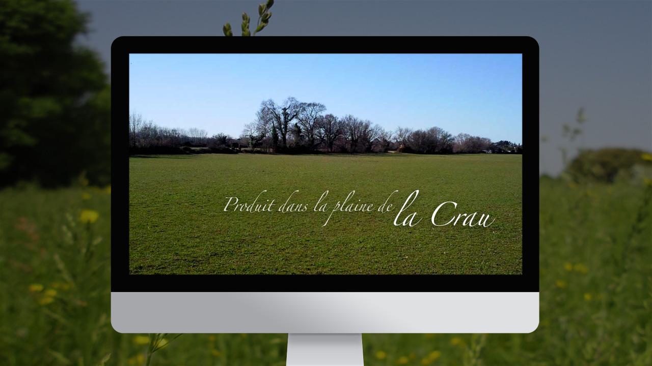 mas-regardevenir-creation-site-internet-caconcept-alexis-cretin-graphiste-montpellier-6