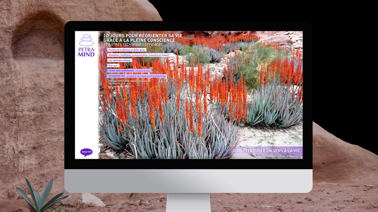 petramind-creation-site-internet-communication-caconcept-alexis-cretin-graphiste-montpellier-10