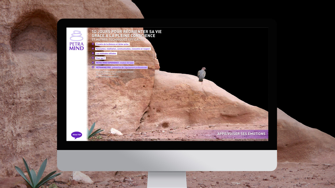 petramind-creation-site-internet-communication-caconcept-alexis-cretin-graphiste-montpellier-5