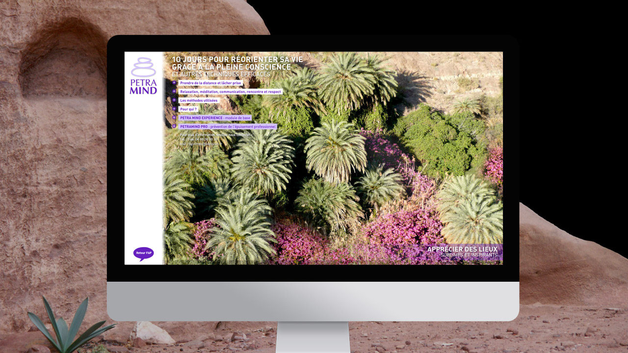 petramind-creation-site-internet-communication-caconcept-alexis-cretin-graphiste-montpellier-9