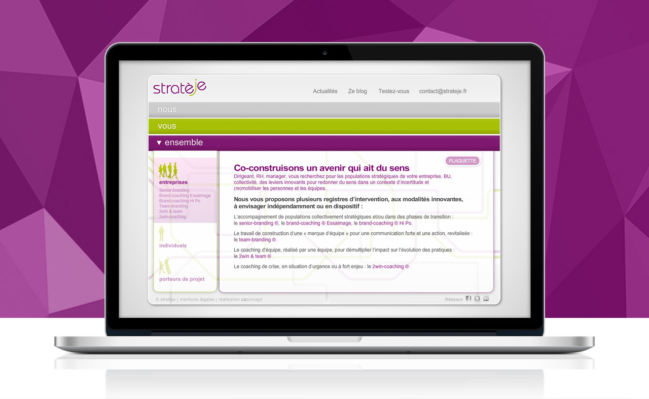 strateje-creation-site-internet-communication-caconcept-alexis-cretin-graphiste-montpellier-7