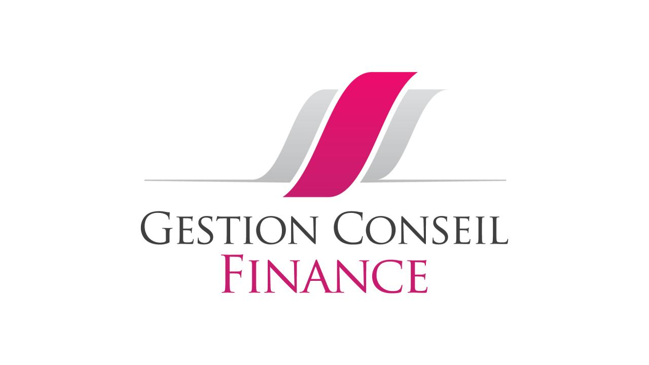 creation-logo-gestion-conseil-finance-graphiste-montpellier-caconcept-alexis-cretin