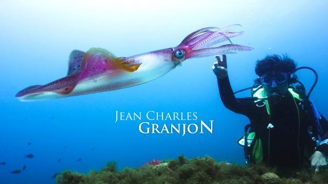 granjon-realisation-creation-site-web-caconcept-alexis-cretin-graphiste
